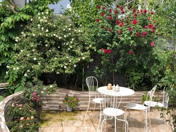 Xiêu lòng trước sân thượng rực rỡ hoa hồng của bà mẹ ở Hà Nội