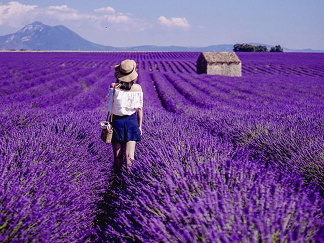 Những lễ hội hoa châu Âu nức tiếng bạn nên đến hè này