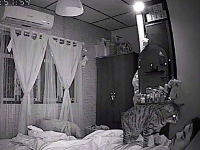 Sáng nào thức dậy cũng bị tức ngực, chàng trai lắp camera phát hiện sự thật không tưởng