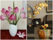 5 loại hoa đẹp bày phòng khách không sớm thì muộn, kiểu gì cũng giàu