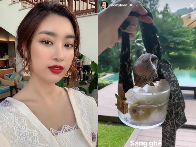 Sự thật việc Hoa hậu Đỗ Mỹ Linh mua túi 30 triệu chỉ để... đựng trái cây