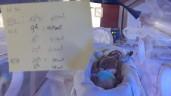 """Tết nơi những em bé bằng cổ tay giành giật sự sống: """"Ở lại ăn Tết cùng mẹ con nhé"""""""