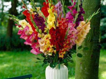 Những loại hoa Tết đẹp và gợi ý cách cắm để đem đến tài lộc, phú quýcho gia đình
