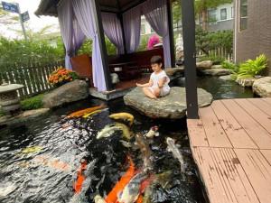 Nhật Kim Anh tiết lộ lý do nhớ con nhưng không dám về gặp