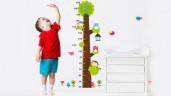 Những đặc điểm cơ thể của trẻ báo hiệu sau này lớn lên con cao lớn vượt trội