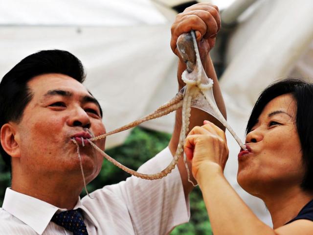 Đặc sản bạch tuộc sống Hàn Quốc: Cho vào miệng vẫn còn ngoe nguẩy