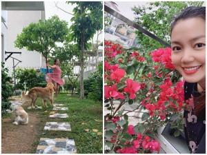 Bỏ nhà giữa lòng Thủ đô, Nguyễn Ngọc Anh chuyển ra ngoại thành tự ươm cây, trồng hoa