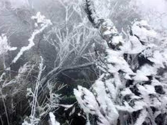 Đợt rét buốt kỷ lục mới tràn về: Càng về đêm càng rét, khả năng lại có tuyết rơi