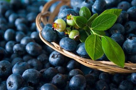 Thực phẩm tốt cho gan? Những thực phẩm nào gây hại cho gan? - 3