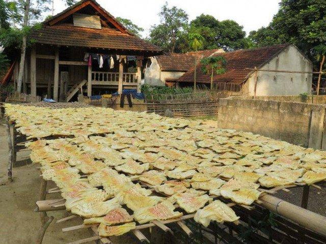 Nghệ An: Thứ đặc sản vùng cao bỗng khan hiếm, giá 250.000 đồng/kg bói không có để mua