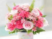 Top 52 quà tặng 8/3 cho mẹ, vợ, người yêu, cô giáo độc đáo và ý nghĩa nhất