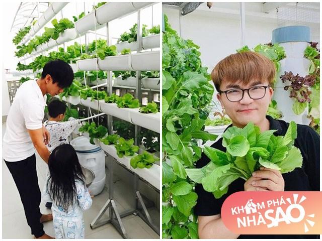 Nhà Celeb: Sao Việt đầu tư làm vườn thủy canh, tốn tiền triệu nhưng thành quả xứng đáng