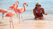 Giới trẻ thế giới đổ xô check-in sang chảnh tại bãi biển hồng hạc