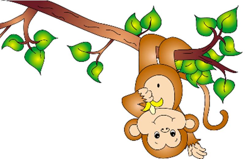 Khỉ được xem là con vật thông minh, khôn khéo nhất trong 12 con giáp. Những người tuổi Thân cũng như con giáp mà họ đại diện, không chỉtài giỏi, thông minh, nhanh nhẹn mà còn giàu lòng vị tha, sẵn sàng giúp đỡ người khác.