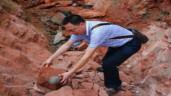 Vô tình nhặt được trứng khủng long 66 triệu năm tuổi