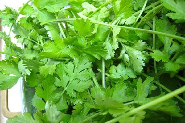 Cách làm salad trộn vừa ngon vừa thanh mát, giúp bạn giải nhiệt mùa hè - 4