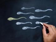 5 loại thực phẩm   phá hết   tinh trùng, vợ đang muốn có con cần hạn chế cho chồng ăn