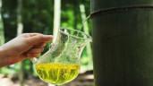 Rượu làm từ ống tre siêu độc đáo của người Trung Quốc