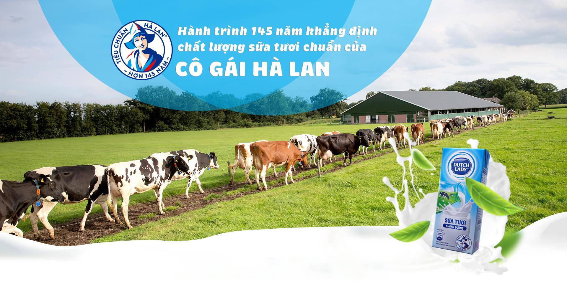 hanh trinh 145 nam khang dinh chat luong sua tuoi chuan cua co gai ha lan - 1