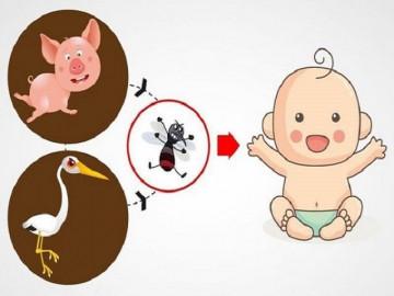 Viêm não Nhật Bản: Nguyên nhân, dấu hiệu và các biến chứng
