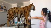 """Trách dịch COVID-19, siêu mẫu Xuân Lan vẫn làm con gái sung sướng vì được đi """"sở thú"""" tại nhà"""
