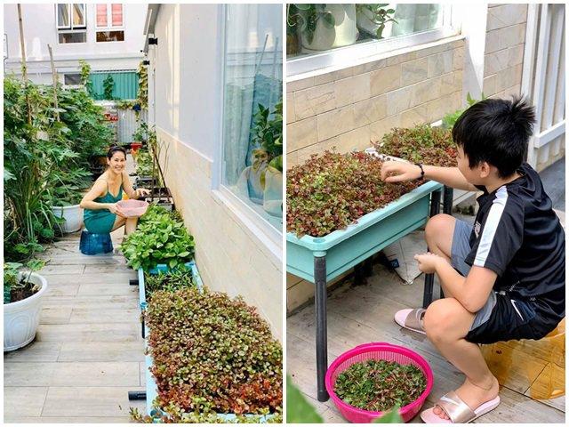 Mẹ đơn thân Thân Thúy Hà tự trồng rau trong biệt thự, con trai 10 tuổi đã biết làm vườn