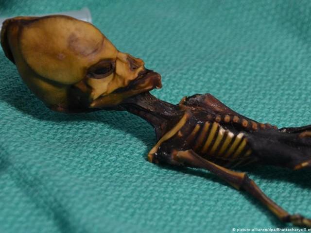 Bí ẩn xác ướp người ngoài hành tinh sau 15 năm mới hé mở câu chuyện đau lòng phía sau