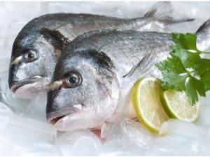 Thời hạn bảo quản cá tươi và cá đã nấu chín trong tủ lạnh không phải ai cũng biết