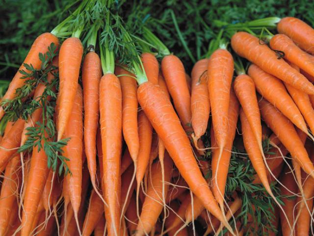 Ăn cà rốt giảm cân, ngừa ung thư nhưng 4 người này nên hạn chế ăn kẻo thiệt thân