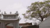Ngỡ ngàng di tích quốc gia Chùa Đậu được 'cấy' thêm nhiều công trình hoành tráng