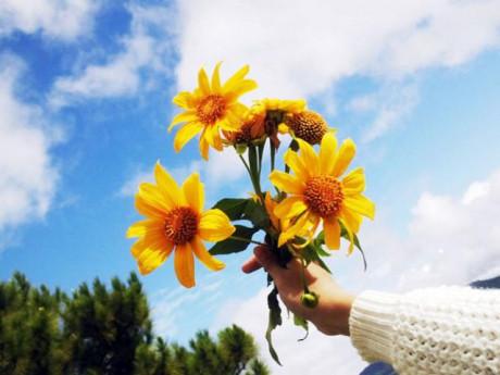 Hạnh phúc nào ở đâu xa, đơn giản là tránh 6 thái độ sống này