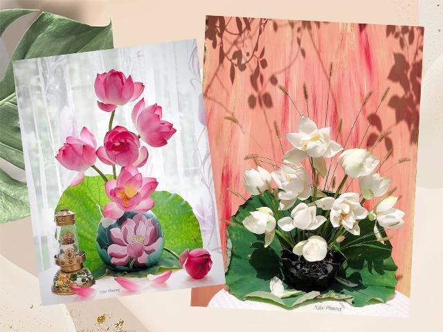Say mê sen Đế Vương, mẹ Hà Nội chịu chơi, đưa hoa bằng máy bay từ Huế ra thủ đô