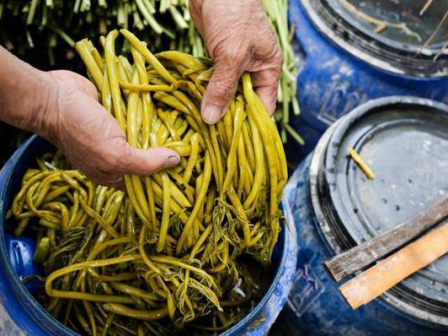 Xưa để chống đói, nay trồng loại rau này không chỉ thoát nghèo mà còn kiếm tiền triệu mỗi ngày