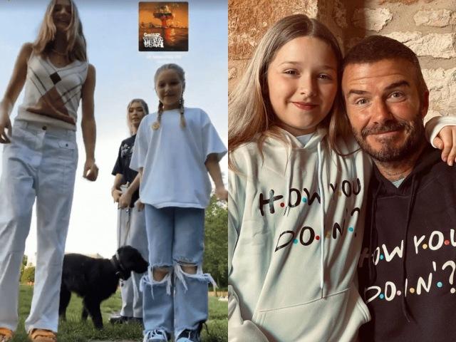 Mới 9 tuổi, Harper Beckham đã lớn tướng, to hơn cả bạn gái của anh trai