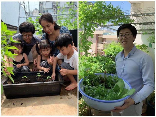 Mẹ 9X cải tạo 3m2 ban công làm vườn, bội thu rau quả cả nhà ăn không hết