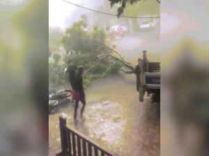 Hà Nội: Dông lốc khủng khiếp, cây đổ đè chết người đi đường ở Hồ Tây