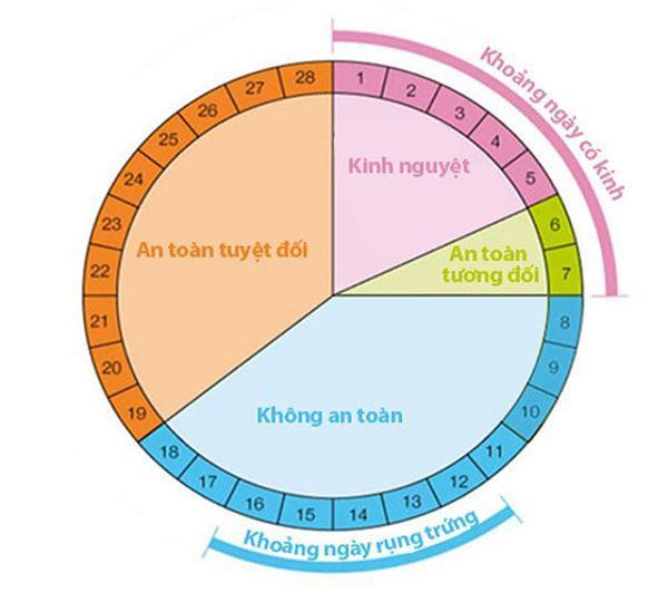 Chu kỳ kinh nguyệt: Tính từ ngày nào và bao nhiêu ngày? - 6