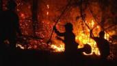 Cháy rừng khủng khiếp nhất trong lịch sử tại Diễn Châu
