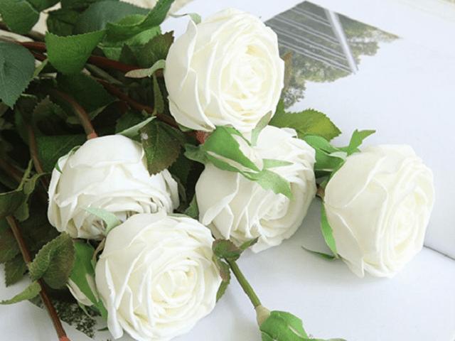 Ý nghĩa của hoa hồng trắng - loài hoa trong sáng, thanh khiết