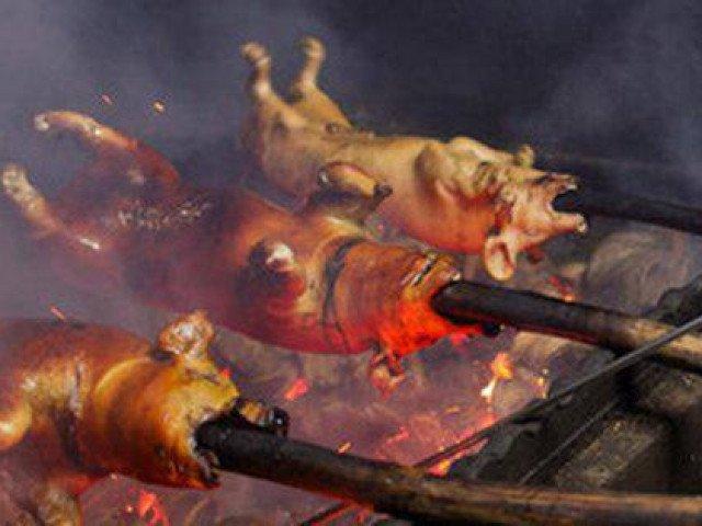 Thịt lợn quay trứ danh khiến thực khách phải xếp hàng chờ đợi nhờ cách quay thịt độc đáo