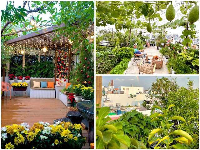 Con gái trị bệnh cần rau sạch, mẹ Sài Gòn 10 năm trồng vườn sân thượng nhà phố
