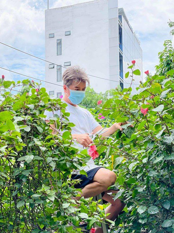Đàm Vĩnh Hưng ở nhà khoe vườn cây, thu hoạch loại quả nhà quê làm fan thèm thuồng - 6