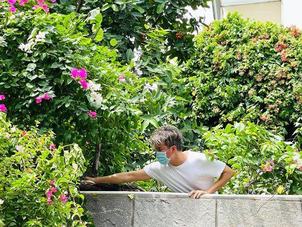Đàm Vĩnh Hưng ở nhà khoe vườn cây, thu hoạch loại quả nhà quê làm fan thèm thuồng - 8