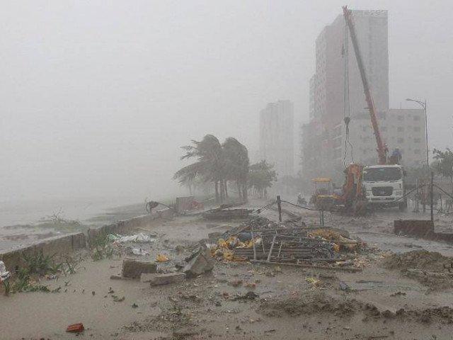 Bão số 5 sắp đổ bộ:Cây cối ngã đổ, người dân đội mưa to, gió lớn đi mua thực phẩm
