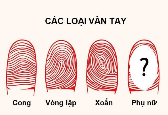 """12 su that """"khong tuong"""" ve co the: phu nu co the sinh 40 con, dan ong cung co sua - 6"""