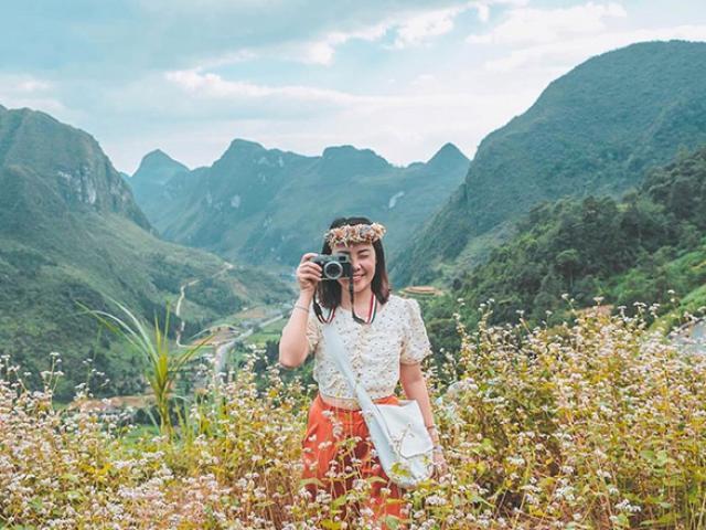 6 địa điểm ngắm trọn vẻ huyền diệu của hoa tam giác mạch Hà Giang