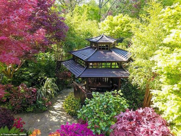 Cặp vợ chồng già biến vườn nhà thành kiệt tác nghệ thuật khiến ai cũng ngưỡng mộ
