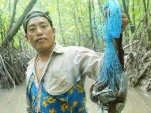Tới Cà Mau phượt ca nô qua rừng đước, ăn toàn của ngon vật lạ