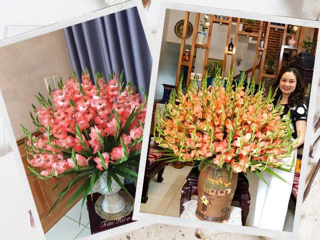 Mẹ Tuyên Quang cắm hơn 100 bông lay ơn khiến ai cũng nức lời khen
