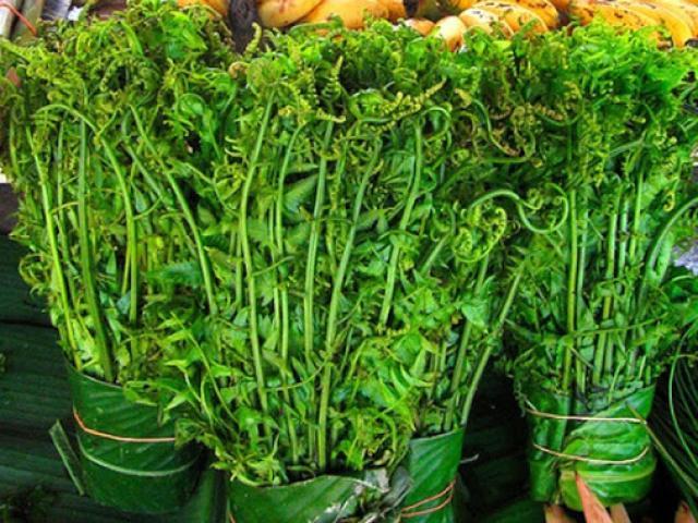 Loại rau mọc dại ven suối, giờ trở thành đặc sản xuất hiện trong nhà hàng